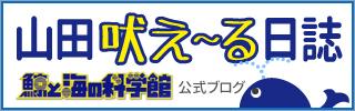 山田吠え~る日誌
