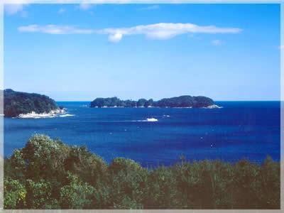 タブの大島