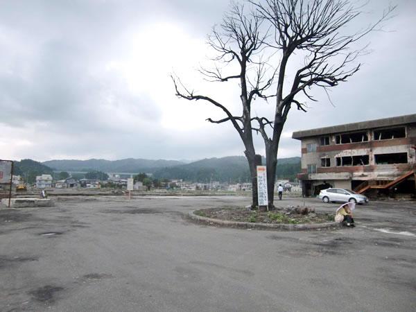 陸中山田駅(山田町川向町)