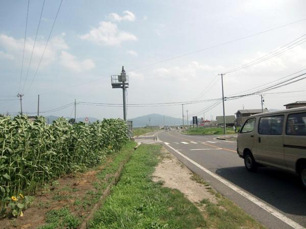 大沢小学校入口(山田町大沢)