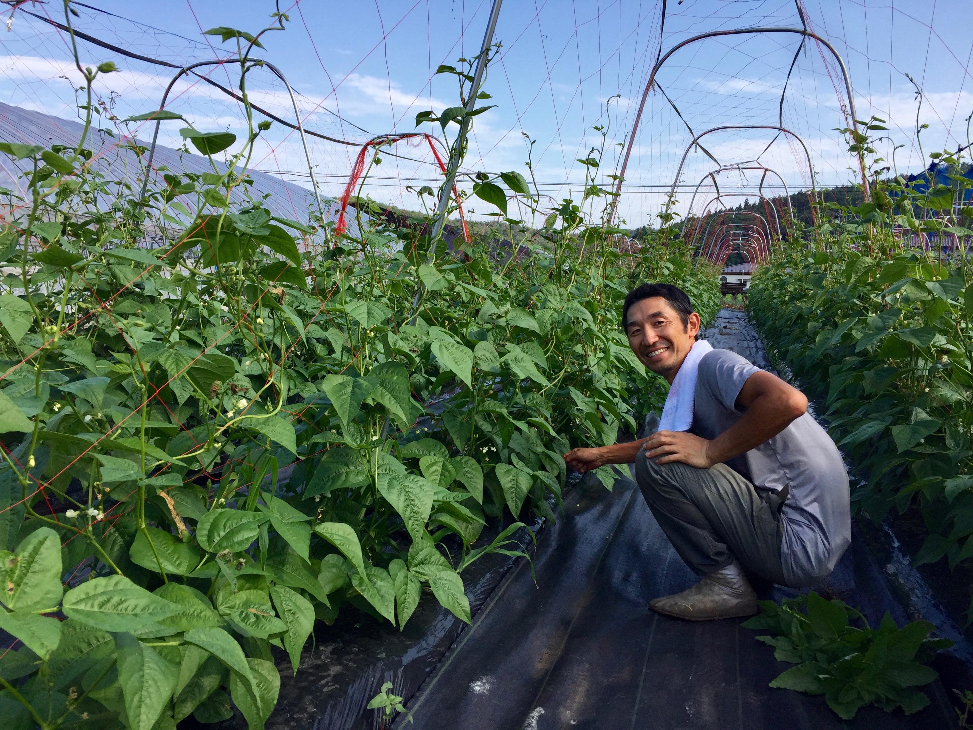 12月まで延長!土日限定!いわき農園のカラフルニンジン&秋野菜の収穫体験